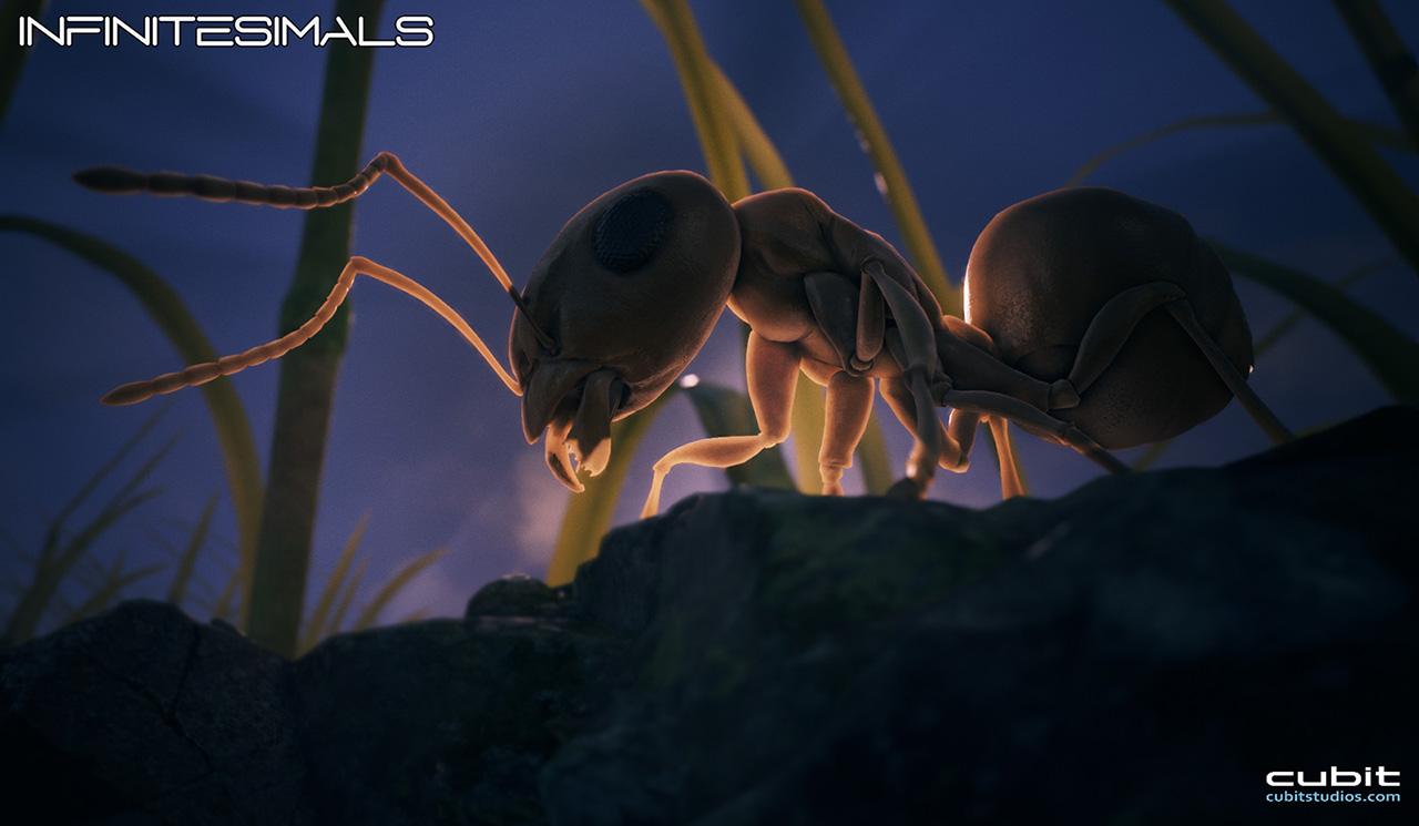 Ant_SSS_f.jpg